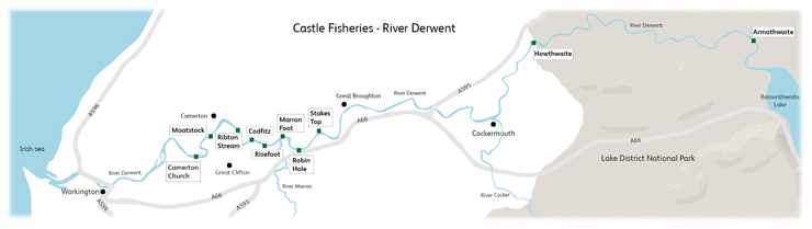 Castle Fisheries the River Derwent